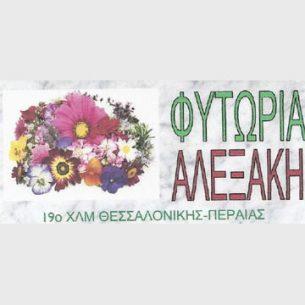 Αλεξάκη