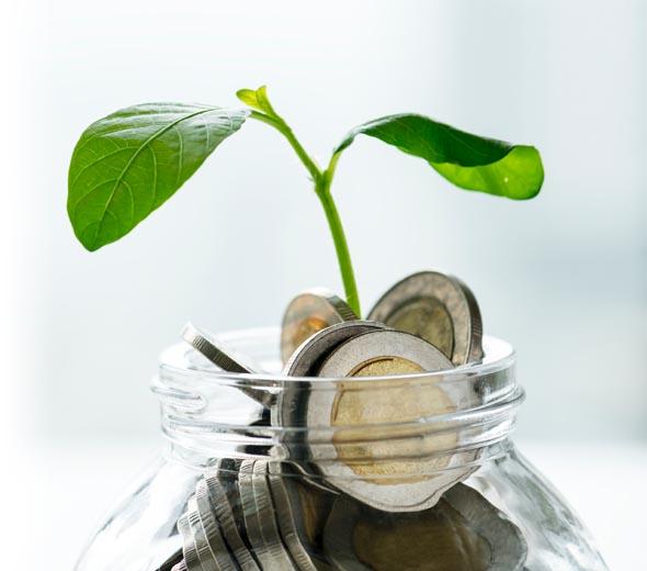 Λογιστικές Υπηρεσίες Εταιρειών & Ιδιωτών APEX